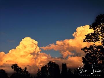 Cumulonimbus in Summer V