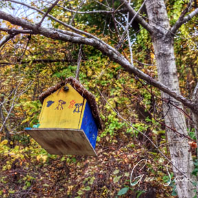 Birdhouse and Trees