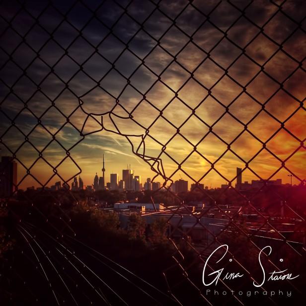 Toronto Sunset IV