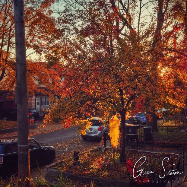 Street in Autumn II