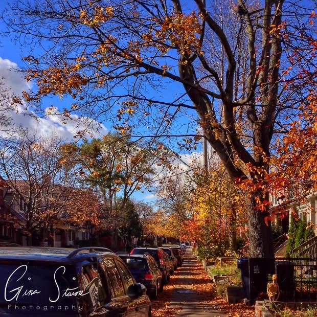 Street in Autumn