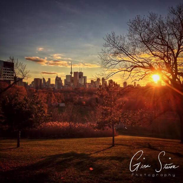 Toronto Skyline during Golden Hour