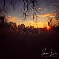 Sunset behind the Skyline