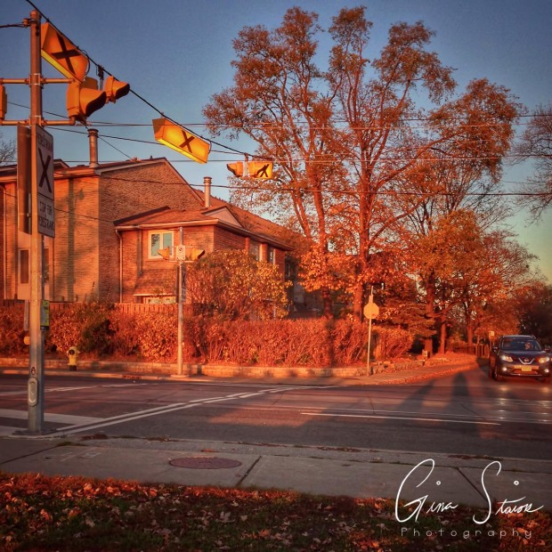 Orange Crosswalk