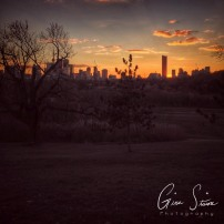 Sunset behind the Skyline II