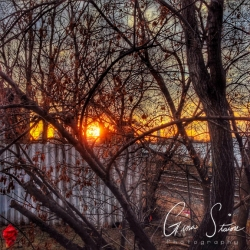 Sunset on January 30 V