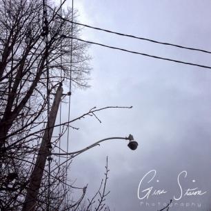 Grey Sky I