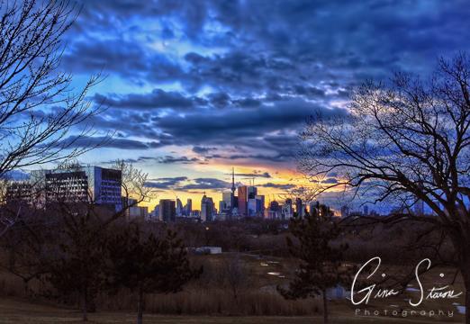 Toronto Skyline in Spring