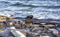 Scarborough Bluffs on September 25, 2016. IV