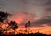 Sunset on November 1, 2016. IV