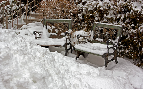 Snowed-In Chairs