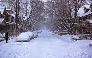 Winter Mist I