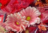 Grocery Store Flowers II