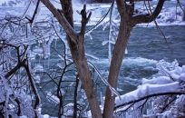 Frozen Niagara on January 7, 2018. II