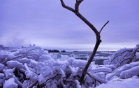 Frozen Niagara on January 7, 2018. V